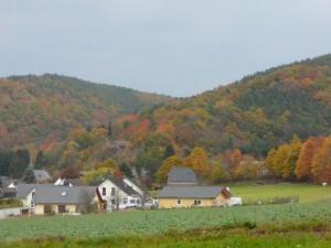 P1070593-Eifel